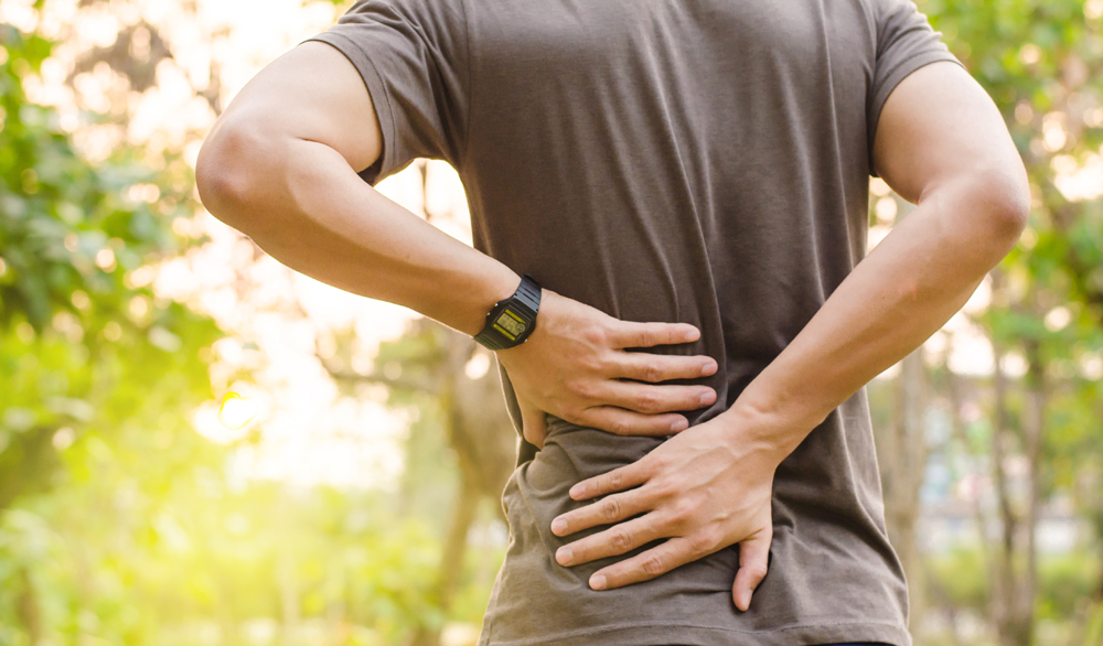Our New Albany Chiropractic & Wellness Team Answers Your Questions About Back Pain